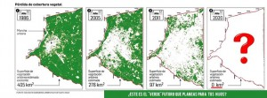Santa Cruz pérdida de cobertura vegetal -Entwicklung Vegetation